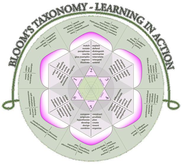 Blooms Taxonomy Rose
